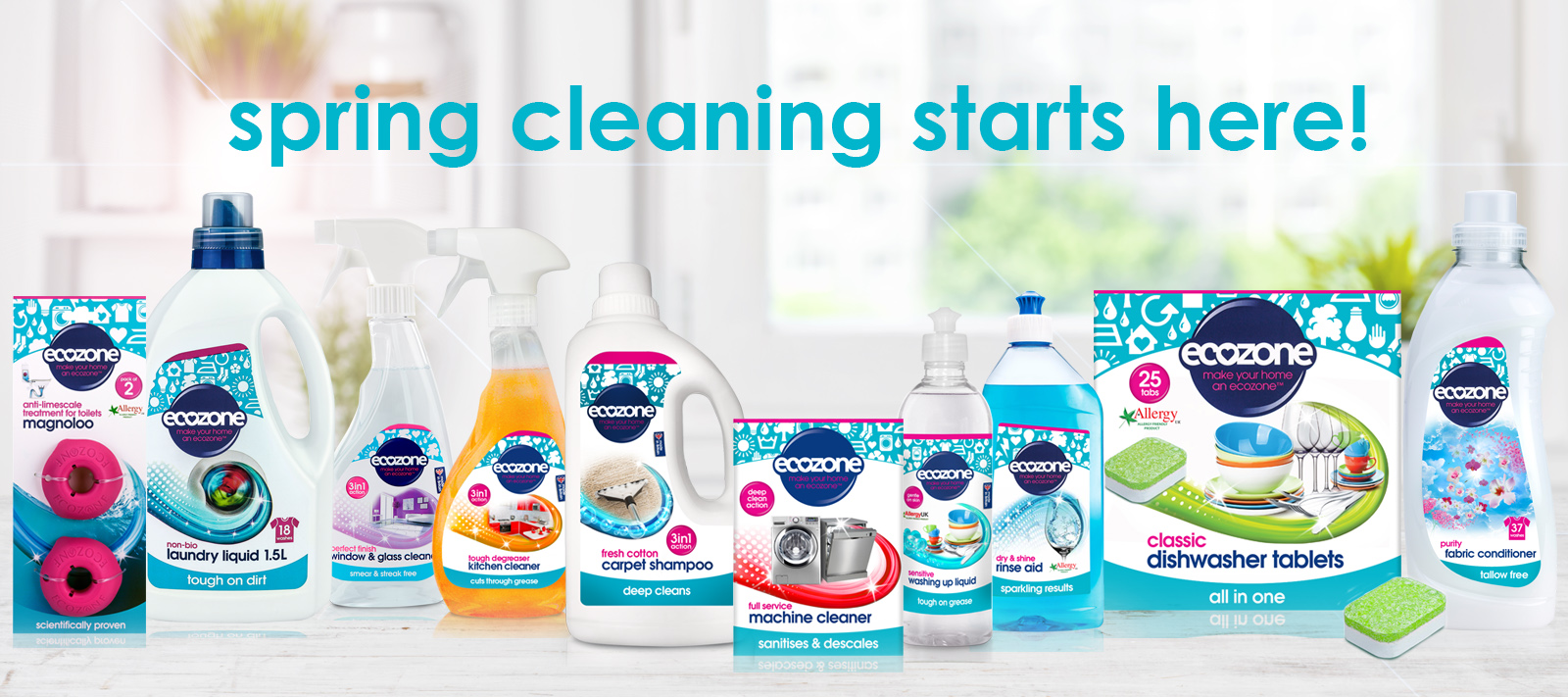 Ecozone Official Home Spring Cleaning Banner