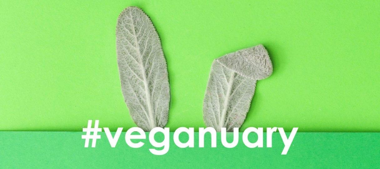 Veganuary Ecozone