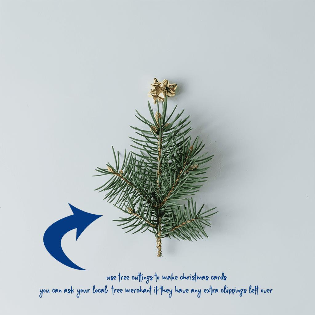 Eco-friendly Christmas Ecozone 11
