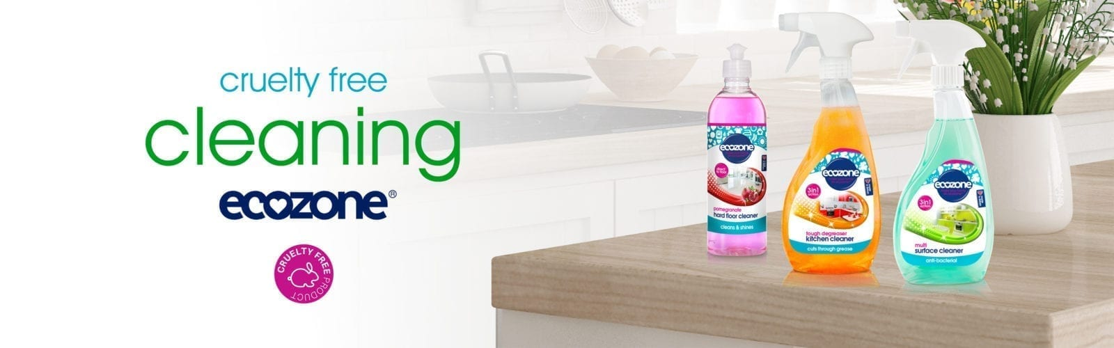 Natural Cleaning Products Ecozone