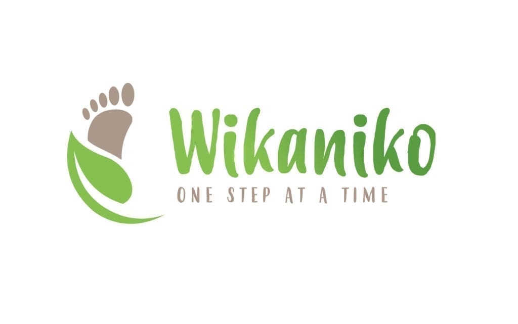 Ecozone Where To Buy Wikaniko