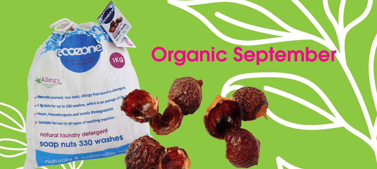 Organic September: Ecozone Soap Nuts